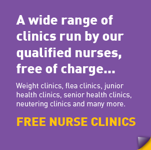 offer-nurse