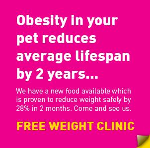 offer-weight